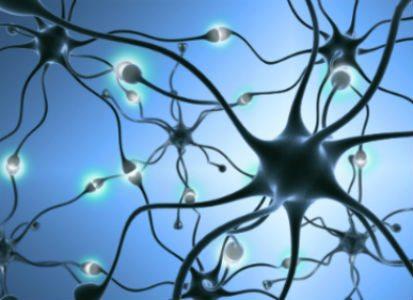 Brain Health Doctor in Chapel Hill NC